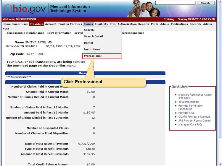 MITS home page showing Claims menu with Professional submenu option highlighted.
